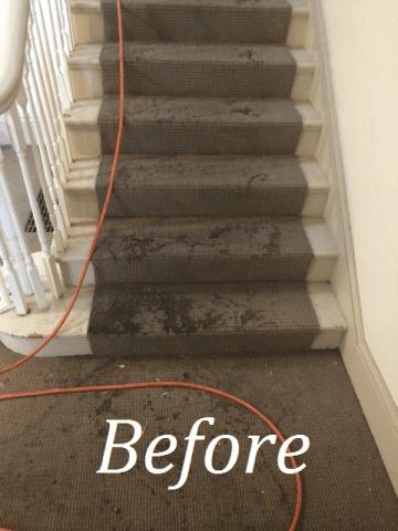 phoca_thumb_l_before dirty carpet