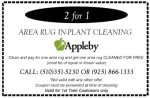 2 for 1 Area Rug In-Plant Cleaning